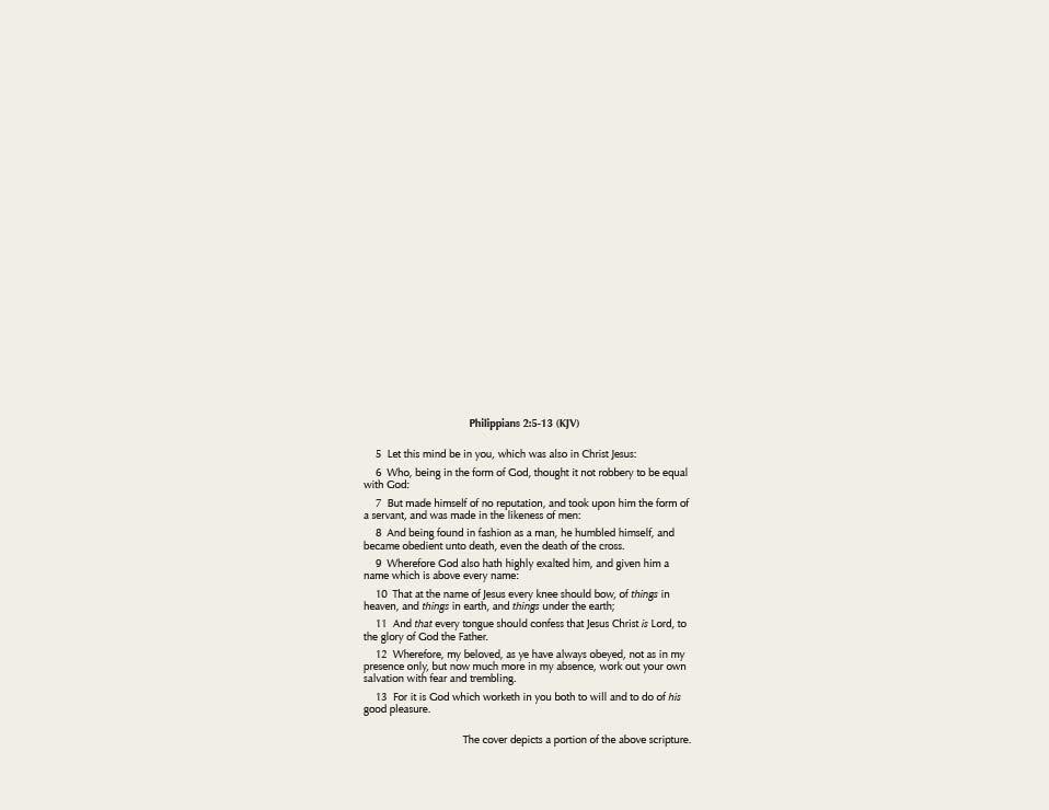 BaptistBeliefsBook-2